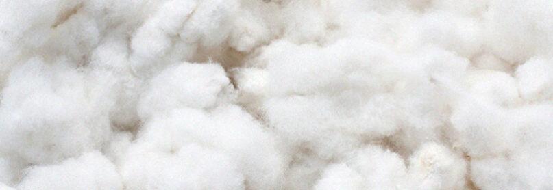 Shop our 100% Cotton Collection.